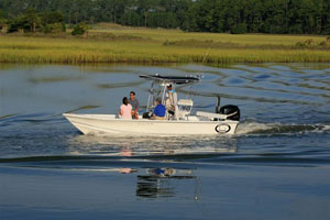 charleston south carolina fishing guide